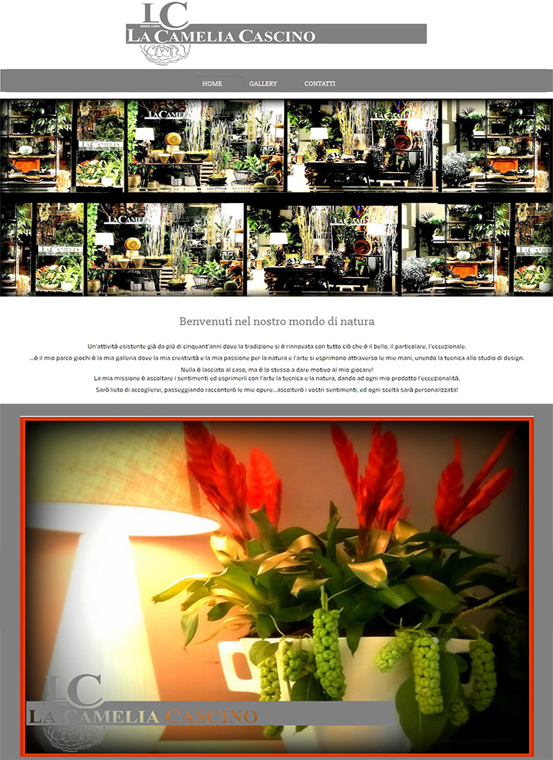 La-Camelia-Cascino-bottega-moderna-homepage