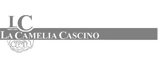 La-Camelia-Cascino-bottega-moderna-logo