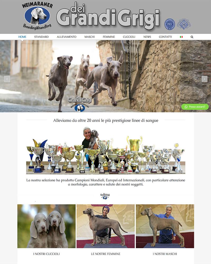 dei-Grandi-Grigi-bottega-moderna-homepage